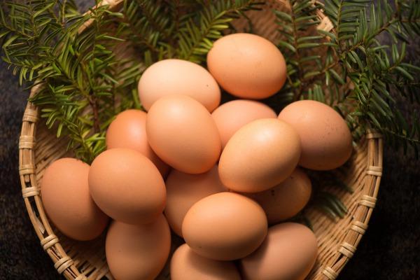 卵_選び方
